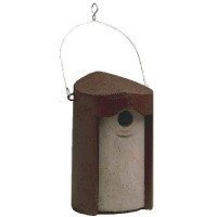 Bird Hole Nest Box